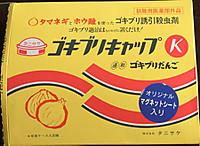 Gokiburicap1